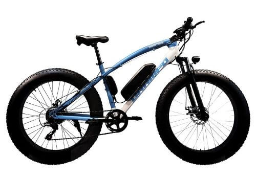 Powertrons Electric Bicycle